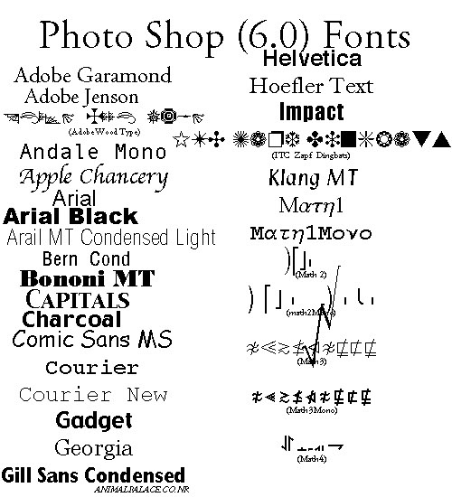Group 5: Ancillary Research- fonts on photoshop