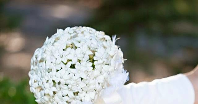 BRIDE CHIC STEPHANOTIS THE NOW AND FOREVER FLOWER