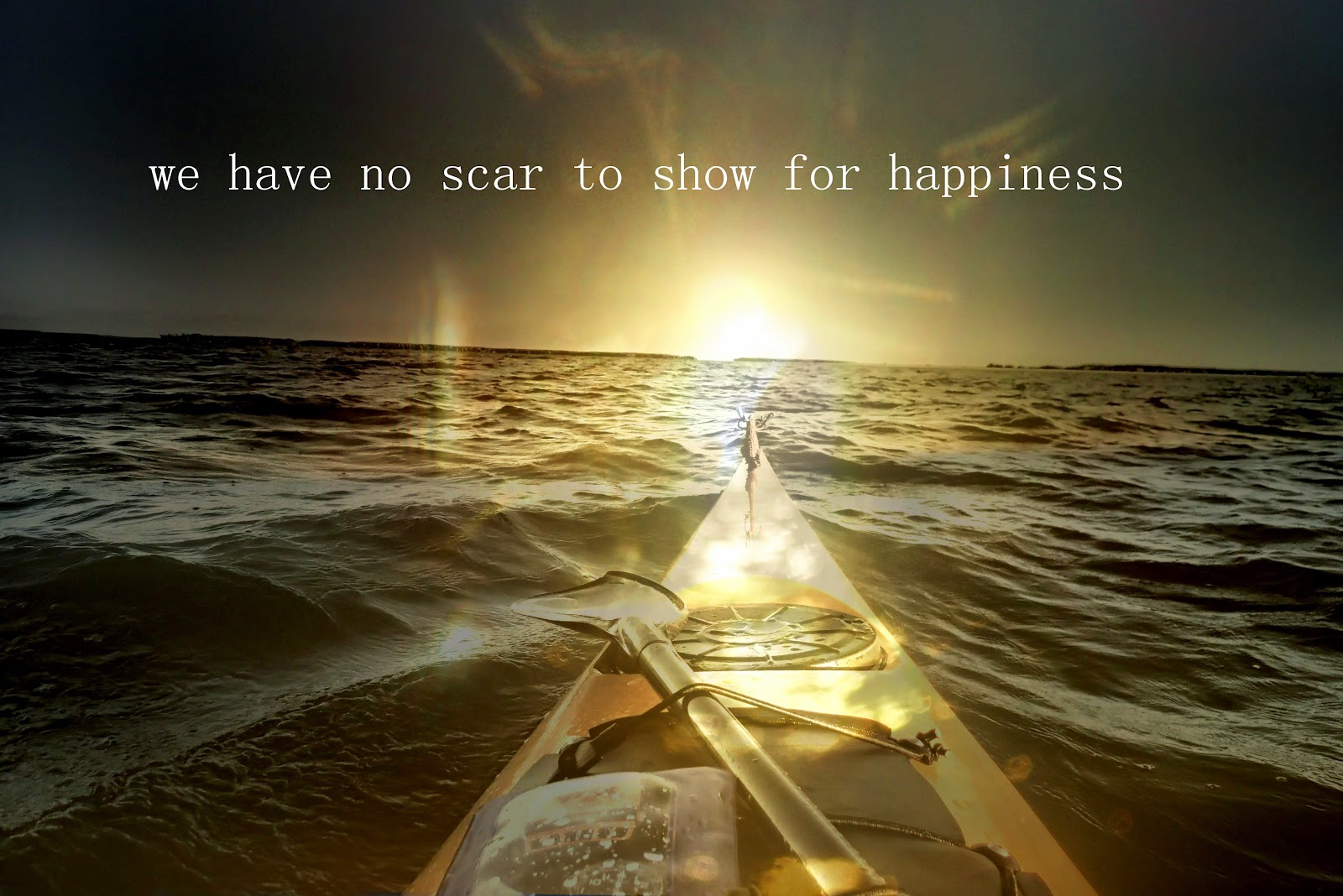 We have no scar to show for happiness - Everglades Challenge 2014