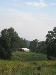 High on a hill at Emerald Glen Farm
