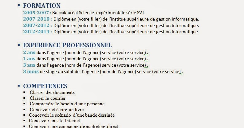 comment faire un cv  cv format word modifiable facilement