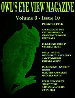 OWL'S EYE VIEW MAGAZINE VOLUME 8B - ISSUE10
