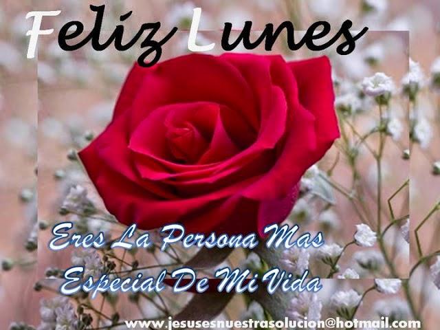imagen de feliz lunes con rosas