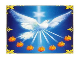 pomba da paz pomba branca Espírito Santo