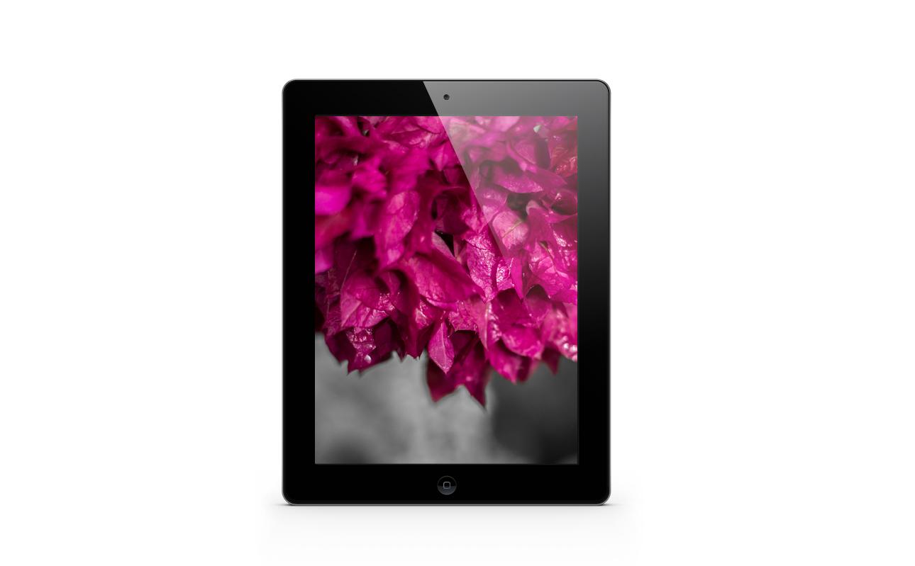 http://4.bp.blogspot.com/-FOsYde9LeRY/UXPrz81QE1I/AAAAAAAACSA/x06TcfRYTZk/s1600/Jururekamphoto-Wallpaper-Pink-iPad-Sample.jpg