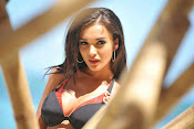 Amy Jackson Hot Photos from Yevadu-thumbnail-4
