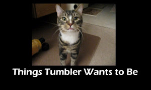 Tumbler Has a Tumblr! You'll adore it: