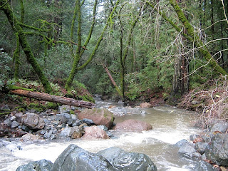 Sonoma Creek at Sugarloaf Ridge State Park