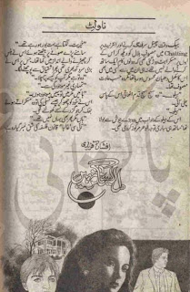 Dil esa nagr nhi novel by Afshan Afridi Online Reading.
