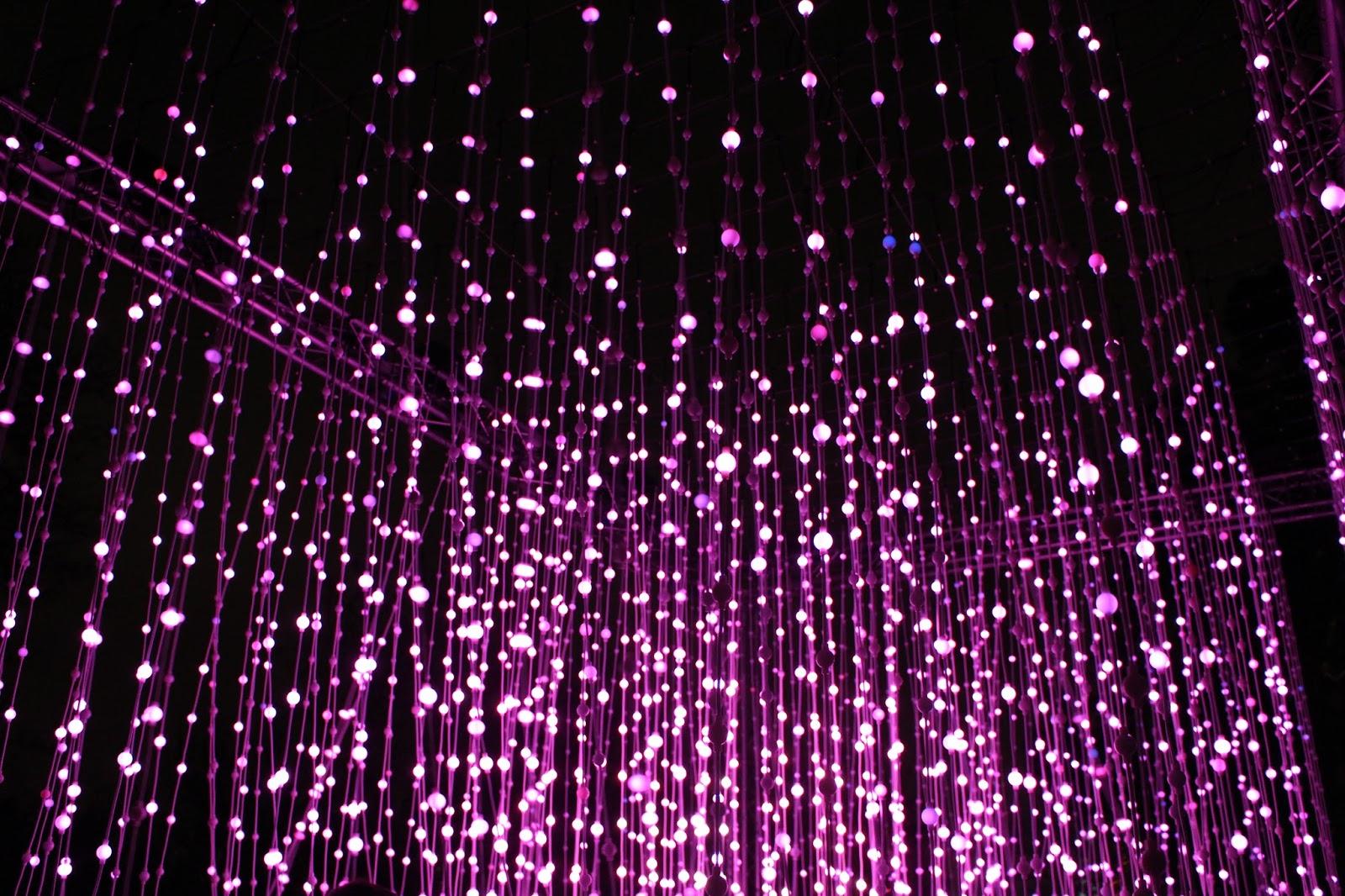 christmas at kew 2015 lights