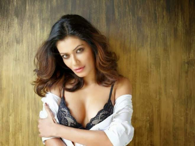 Payal Rohatgi Hot Photos