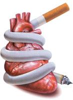 6 Kebiasaan Buruk yang dapat Merusak Fungsi Jantung