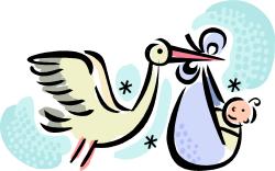 cigogne qui porte un bébé