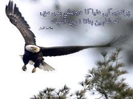Allama iqbal essay in urdu with poetry