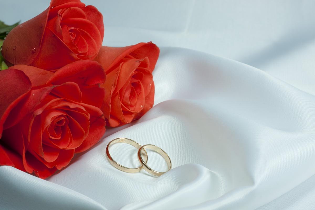 Designer e Galeria: Fundo para convite de Casamento Wedding Cards Background Red