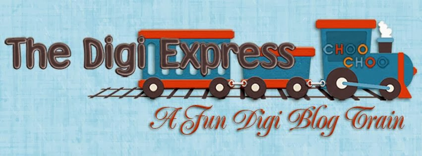 The Digi Express
