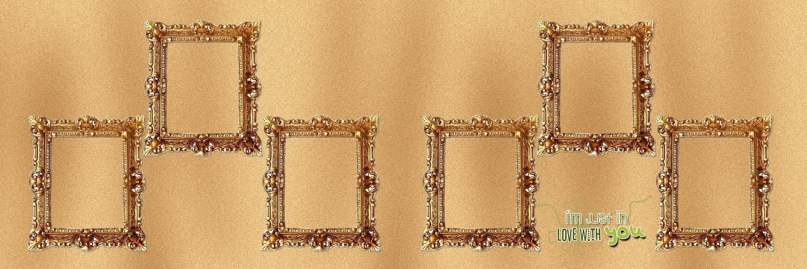 12X36 Wedding Album Designs