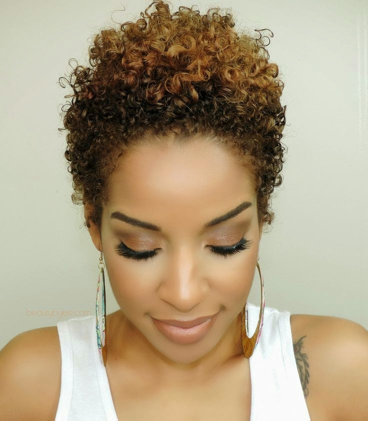 Tapered Pixie Twa Natural Short Hairstyle 2013