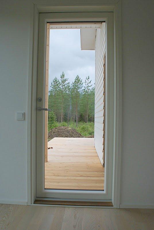 lehtikuusi, puutarha, minimalistinen