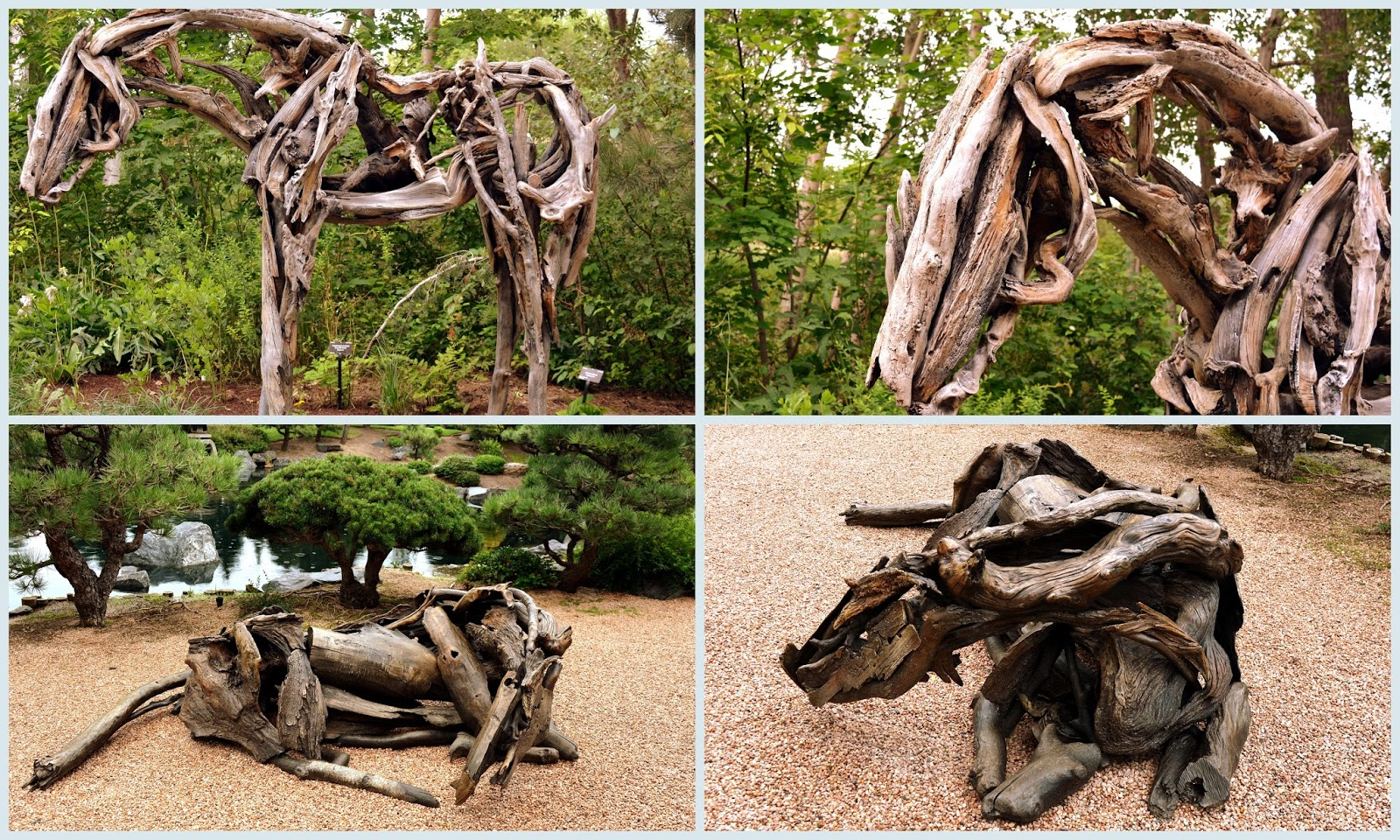 Themed Gardens Within The Denver Botanic Garden And See Diffe Horse Sculptures On Display They Looked As If Had Been There Forever