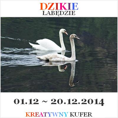 http://kreatywnykufer.blogspot.com/2014/12/wyzwanie-tematyczne-basn-dzikie-abedzie.html