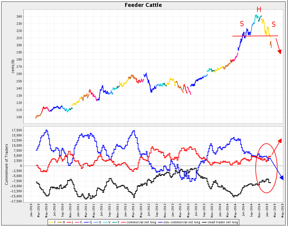 Feeder Cattle futures chart
