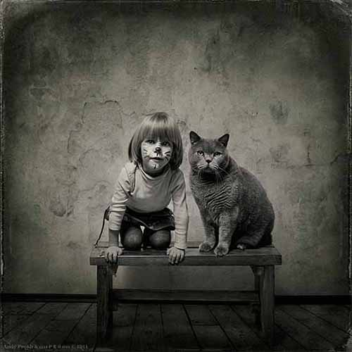 We are the Cats por Andy Prokh