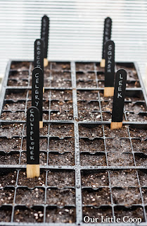 DIY, urban farm, seed, markers, how-to, make your own, label, garden, plant, label, beets, basil, tomato, chalk