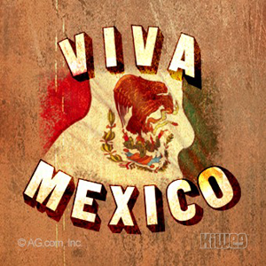 Tarjeta viva México