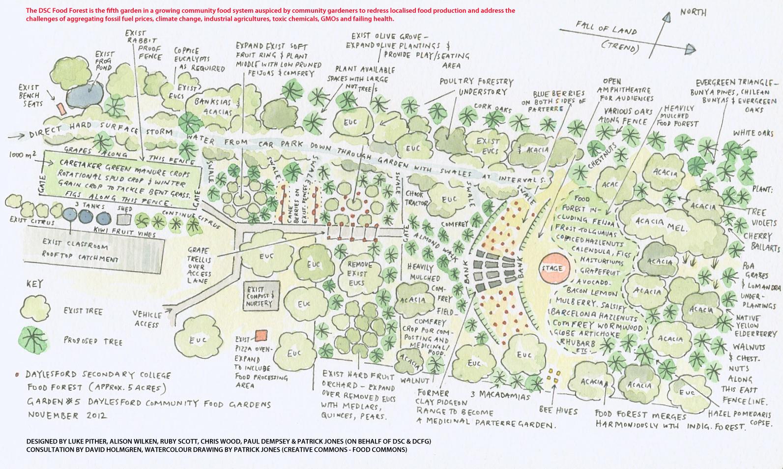 School garden design drawing - Drawing By Patrick Jones Click For Bigger
