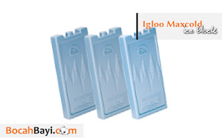 Ice Pack Igloo MAXCOLD, icepack