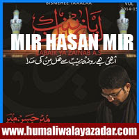 http://ishqehaider.blogspot.com/2013/07/mir-hasan-mir-nohay-2014_1.html