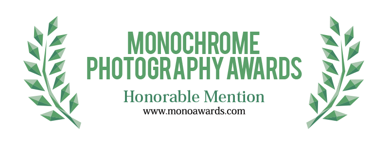 Monochrome Awards 2017