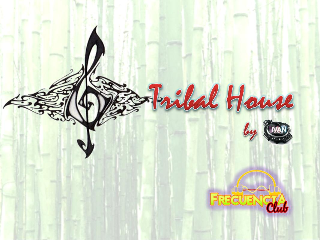 Iv n garc a dj for Tribal house djs