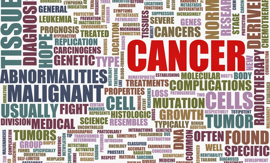 Mengobati kanker payudara dengan herbal