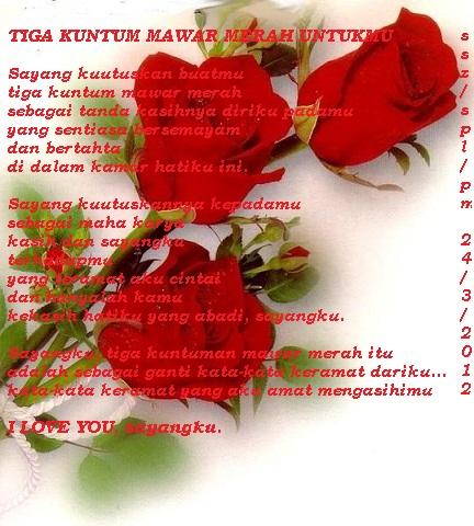 gambar macam macam warna bunga mawar