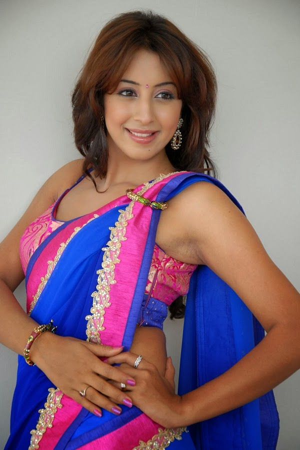 Pictures World Sanjana Galrani In Sharee