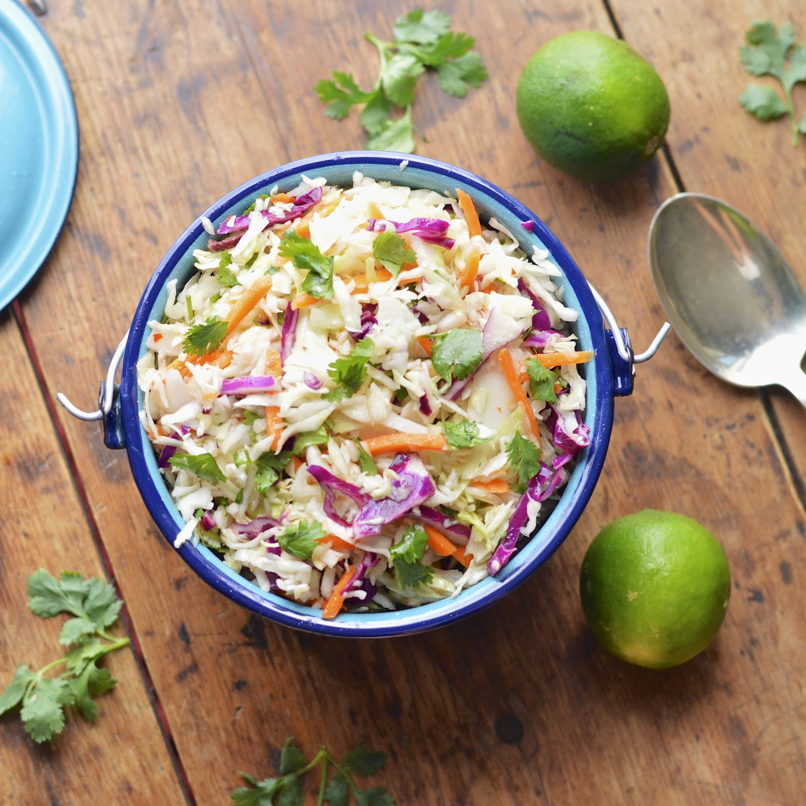 Cole Slaw | Virtually Homemade: Easy Sweet and Spicy Mexican Cole Slaw ...