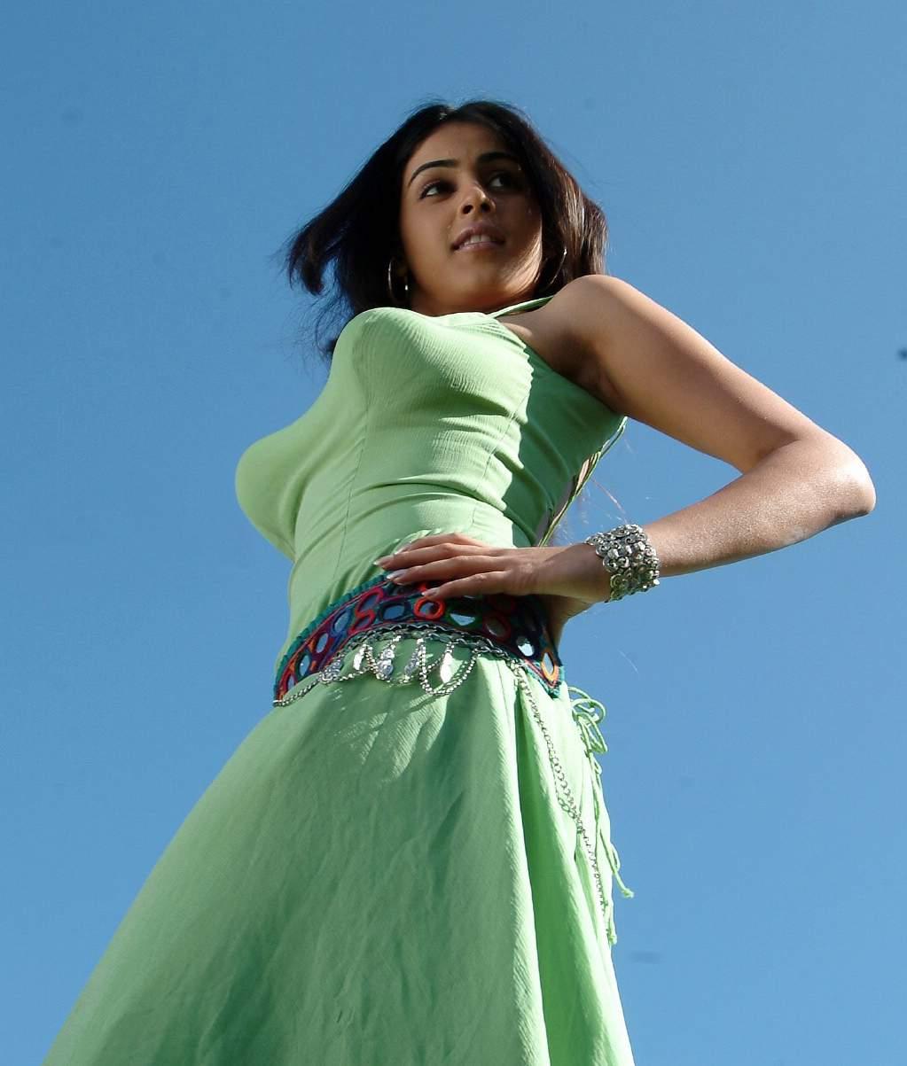 Genelia DSouza Latest Hot Photos - DESI NUDE ALBUM