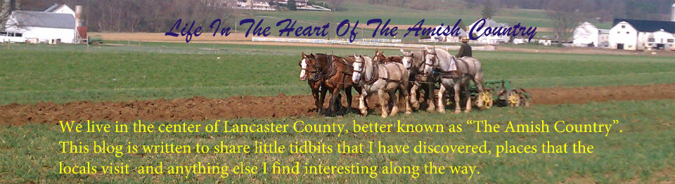 Life in the Heart of the Amish Country