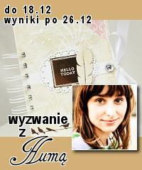 http://blogscrapandme.blogspot.com/2013/12/wyzwanie-9-wyzwanie-humy.html