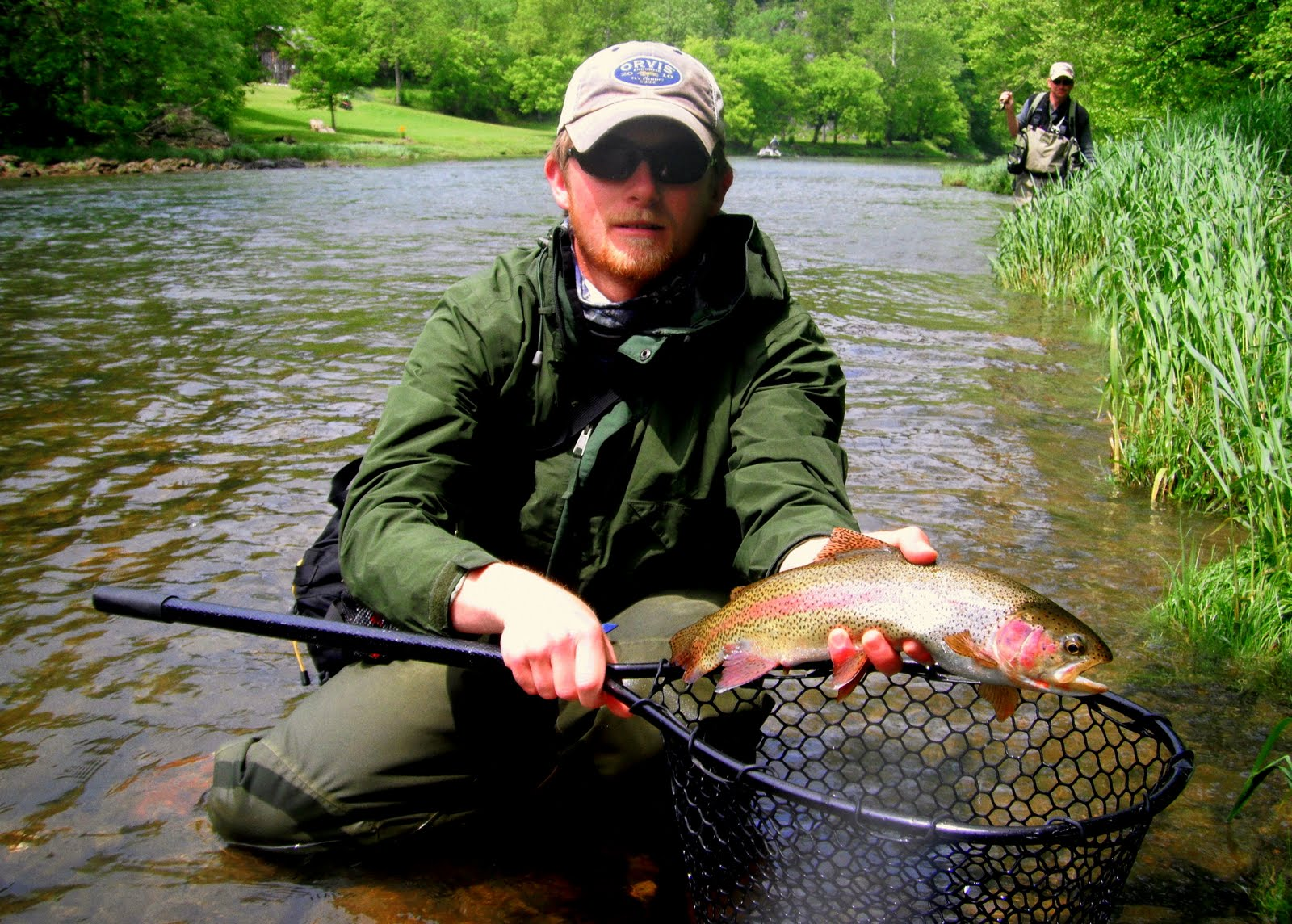 Traveling Guides Fish Hounds South Holston River Tennessee