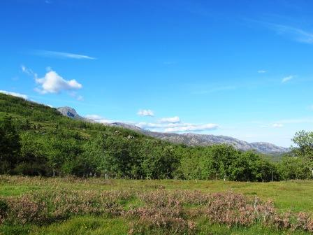 Dehesa de la Golondrina (Navacerrada) IMG_4125