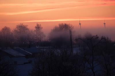 Trädtoppar, hustak och vindkraftverk i disig soluppgång. foto: Reb Dutius