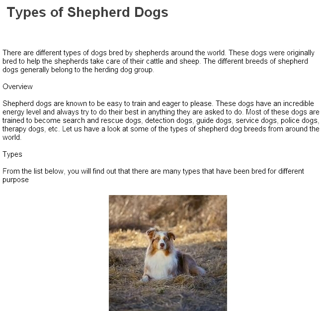 Types of shepherd dogs german shepherd dogs types dogs for What type of dog is this
