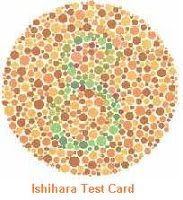Test Buta Warna (Ishihara Test) Saat Sembuat SIM