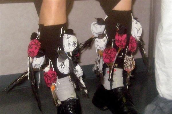 kaos kaki burung