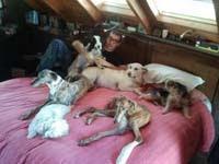 Luis Merlo y sus perritos