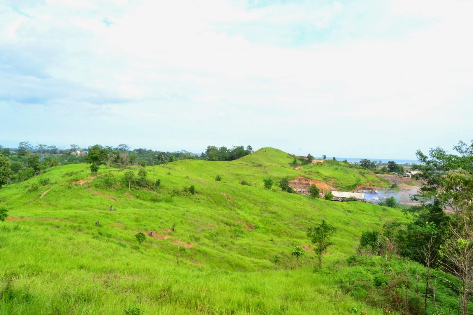 Bukit Alpha atau yang dijuluki Bukit Teletubbies di kawasan Manggar, Kota Balikpapan, Kalimantan Timur. (Sumber foto: tiajulianti.blogspot.co.id)