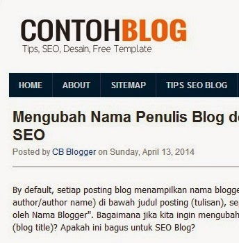 blogger author name - nama bogger